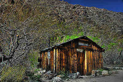 Newman Cabin pic sent to me by Hal Newman.